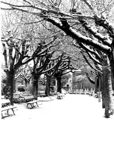 20060416200323-gran-nevada-1987.jpg