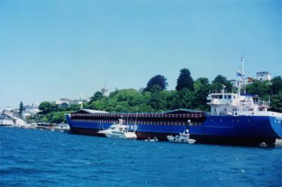20061007171104-javier-barco-antina-06-96.jpg