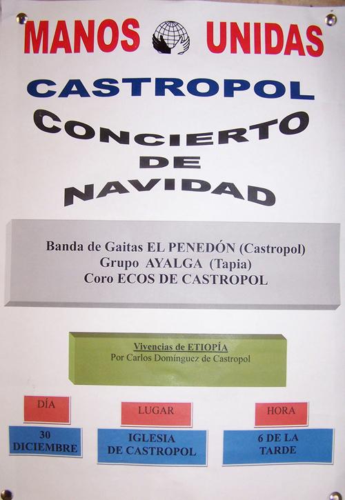 20121225194412-concierto-manos-unidas.jpg