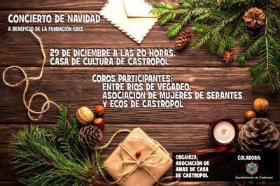20181213121438-concierto-navidad.jpg