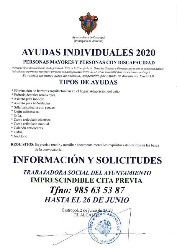 20200603095141-nuevo-plazo-ayudas-individu.jpg
